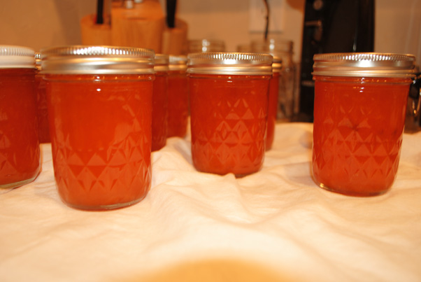 How to make Apricot Jam without Pectin