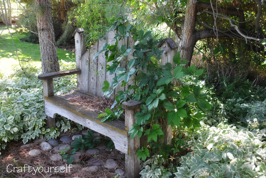 My mother's garden and where my love for gardening came from
