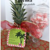 Hawaiian Christmas Gift Idea & Free Printable
