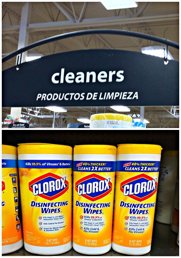 sickness survival store photo clorox