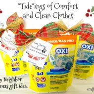 """Tide""ings of Comfort and Clean Clothes Easy Neighbor Christmas gift idea."